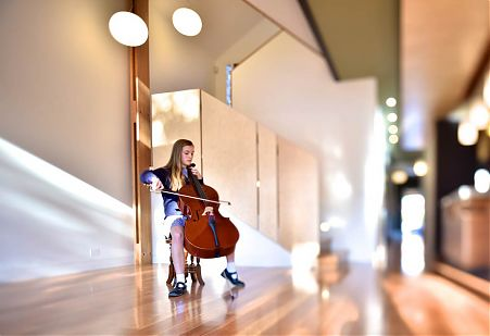 cello player brunswick st in family room